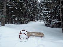 Memórias do inverno Fotos de Stock Royalty Free
