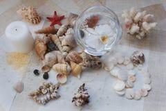 Memórias do oceano Foto de Stock Royalty Free