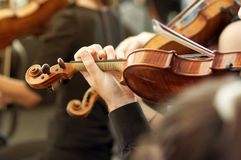 Member of classical music orchestra playing violin on a concert. Unrecognizable musician with string instrument, selective focus