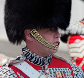 Member of the Welsh Guards at 70th V-E Day Anniversary Royalty Free Stock Photo