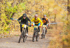 Members of bicycle race competition passing last kilometers in race Stock Photos