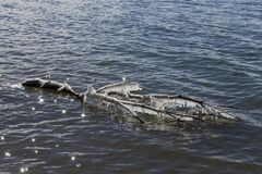 Membre d'arbre congelé flottant sur le lac de scintillement a Images stock