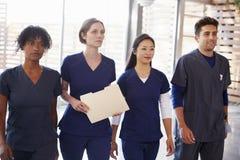 Membres du personnel soignant marchant par l'hôpital avec les notes patientes photographie stock libre de droits