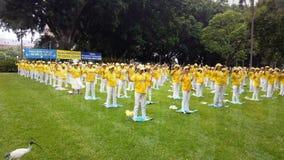 Membri del Falun Gong che meditano in Hyde Park, Sydney, Australia stock footage