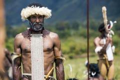 Membri di tribù di Dani al festival annuale della valle di Baliem fotografie stock libere da diritti