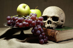 Memento Mori Stock Photography