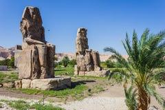 Memnon巨人,国王谷,卢克索,埃及 免版税库存照片