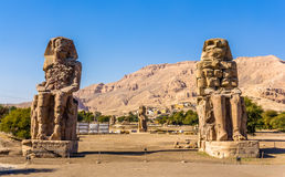 Memnon (法老王在卢克索附近的Amenhotep III)雕象巨人  库存图片