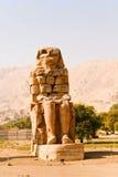Memnon stock images