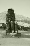 Memnon giant in Egypt Royalty Free Stock Photography