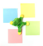 Memo frog. Magnet for refrigerator with four colored post-it royalty free stock images
