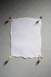 Memo - idea board. Empty white memo with four pins Royalty Free Stock Photo