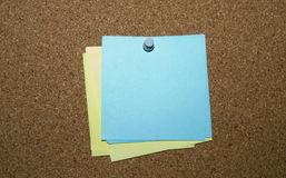 Memo note. The reminder leaf is pinned to a pith board Royalty Free Stock Images