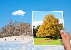 Memorable picture autumn vs winter Royalty Free Stock Image