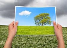 Memorable picture rain vs sun Royalty Free Stock Photography