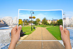 Memorable picture summer park vs winter Stock Photography