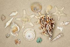 Memoria di vacanza dalla spiaggia Immagine Stock Libera da Diritti