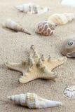 Memoria di vacanza dalla spiaggia Fotografie Stock