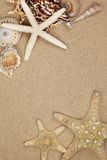Memoria di vacanza dalla spiaggia Fotografia Stock
