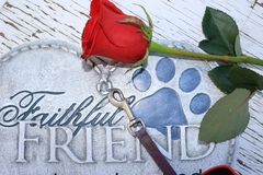 Memorial of a beloved pet Stock Photography