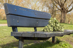 Memorial bench in the park Royalty Free Stock Image