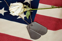 military dog tags and white rose