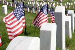 Memorial Day fotos de stock royalty free