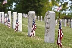 Free Memorial Day Stock Photo - 9501550