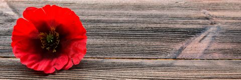 Memorial Day in Amerika De rode papaver is een symbool van geheugen banner stock fotografie