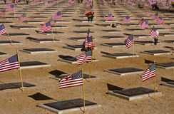 Memorial Day in a Desert Military Cemetery Stock Image
