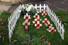 Memorial Day. grave. poppies and crosses Stock Photos