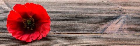 Memorial Day i Amerika Den röda vallmo är ett symbol av minnet baner arkivbild