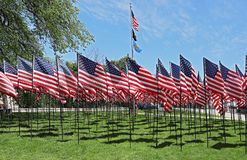 Memorial Day in USA - American flags arranged in rows on Fort Square royalty free stock images