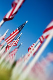 Memorial Day USA flags arrangement. Memorial Day in the USA - American flags arranged on field. Shot angled with a lensbaby for optical blur and limited depth of Royalty Free Stock Photos