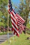 Memorial Day -vlaggen stock foto