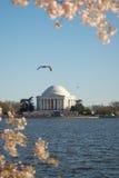 Memorial de Thomas Jefferson Imagem de Stock