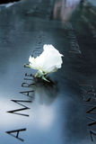 Memorial 9/11. A detail of Memorial 9/11 with a white rose Royalty Free Stock Photography