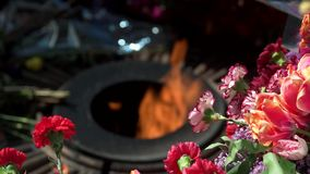 Memorial eternal flame and flowers, close up. Burning eternal flame and bouquets of flowers stock video footage