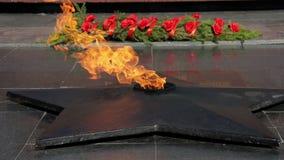 Memorial-the eternal flame.  Patriotic war. stock video footage