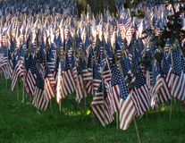 Memorial Flags Royalty Free Stock Image