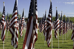 911 Memorial Healing Field American Flags Stock Photos