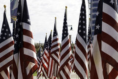 911 Memorial Healing Field American Flags Royalty Free Stock Image