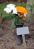 Memorial plaque and flowers in cemetery. With copy space Stock Images