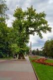 Memorial poplar tree on Square of Fallen Fighters. Volgograd. Volgograd, Russia - August 31, 2016: Memorial poplar tree on Square of Fallen Fighters. It is the stock photo
