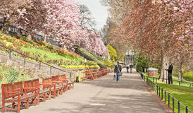 Memorial seats in Princes Street Gardens, Edinburgh Royalty Free Stock Photos