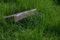 Memorial stone book. Forgotten memorial stone book in the grass Stock Image