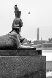 Sphinx. Memorial to Victims of Political Repressions in St. Petersburg, Russia Royalty Free Stock Image