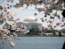 Memoriale del Jefferson Immagini Stock Libere da Diritti