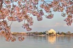 Memoriale del Jefferson del Washington DC Fotografia Stock Libera da Diritti