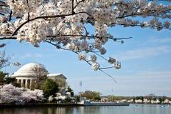 Memoriale del Jefferson del Washington DC con i fiori Fotografie Stock